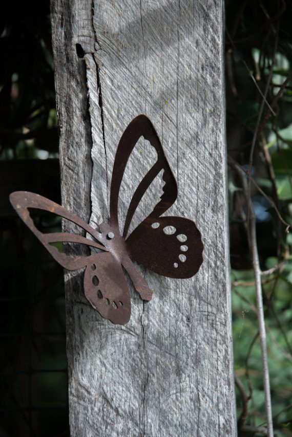 Wall Butterfly Insect Art Metal Work Broadcroft Design